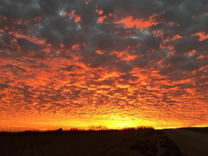 wtx sunset