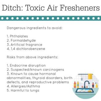ditch air freshener
